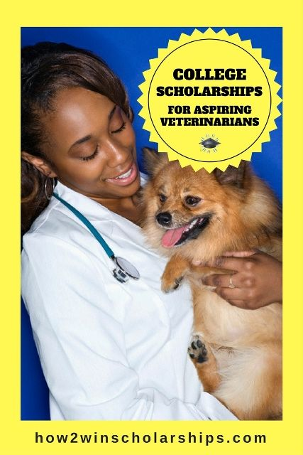 College Scholarships for Aspiring #Veterinarians #college #scholarships