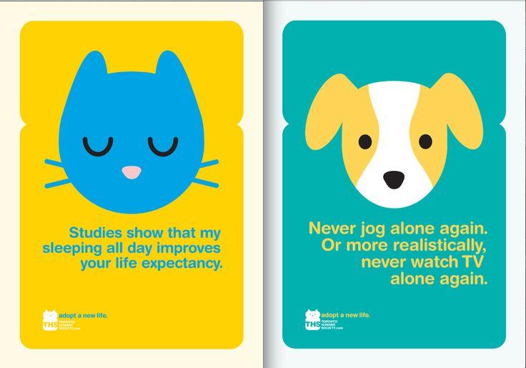 Toronto Humane Society.