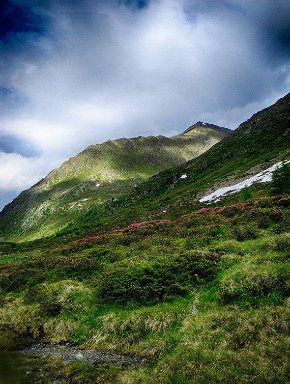 Alpine Meadow Landscape Color Photo Print Fine Art Austria Defereggental Osterreich By Visionitaliane