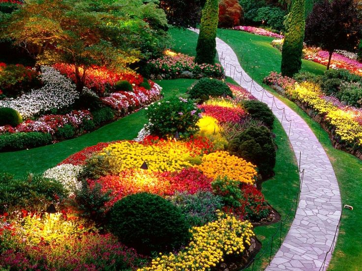 17 best images about slope garden design ideas on - Ideas for gardens on a slope ...