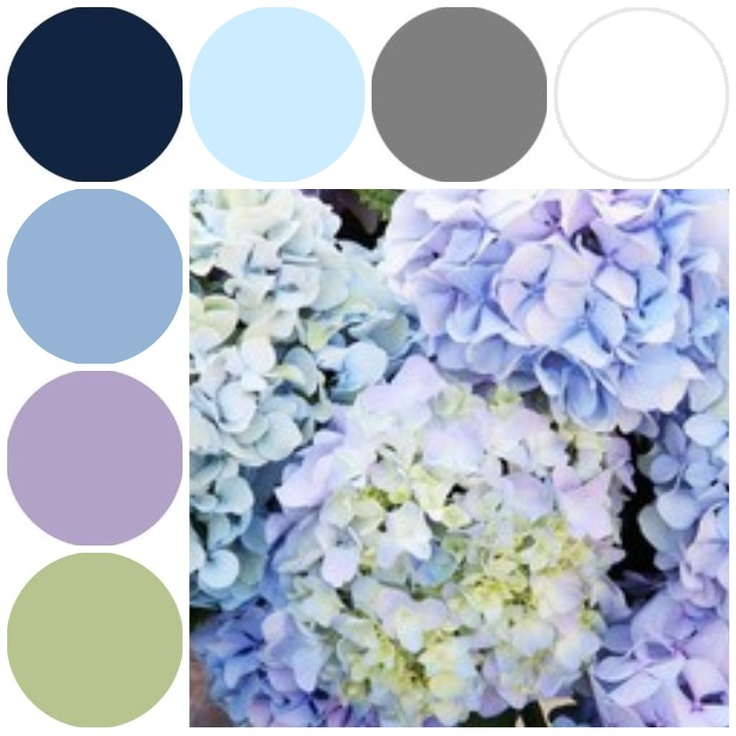this is the color scheme im going for.. mostly navy and powdered blue, with accents of lavendar, sage green, and gray groomsmen suits.