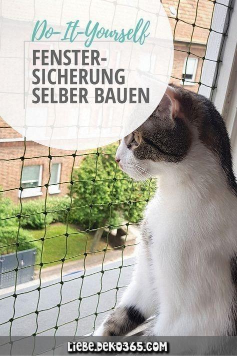 Fensterschloss für jedes ungebohrte Katzen.