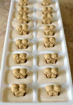 "Easy Ice Dream DIY Dog Treats: These frozen goodies come from the copy-cat recipe for a certain brand of dog ""ice cream."" Be sure your yogurt base contains no artificial sweeteners, which can be harmful to dogs. Click through for 10 more yummy homemade dog treats ideas and recipes."