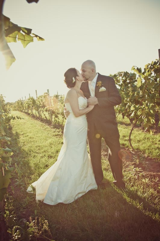 vineyard wedding: Cloches De, Cloche De, Vineyard Wedding