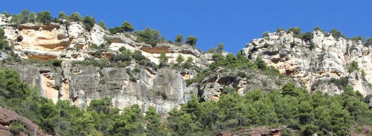 IMG_3422 recomanem visitar amb els teus fills, rutes divertides que suman esport i natura, divertides a la vegade que didàctiques. Desitgem que en gaudiu plegats. Recomanacions dels botiguers i hostaleria del Port de Cambrils, la #xarxadelport, la teva #xarxa sempre cercant el millor per tu i els teus durant la teva estada a Cambrils, Tarragona, Costa Daurada.
