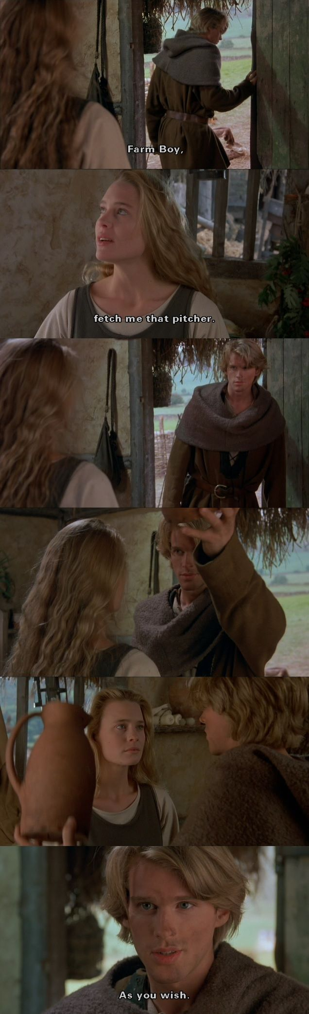 """Fetch me that pitcher?"" (The Princess Bride)"