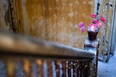 flowers await