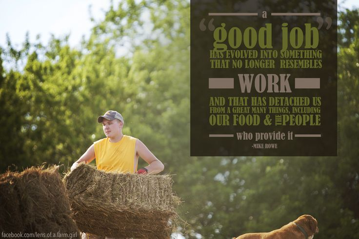 A scarily accurate quote from Mike Rowe | Image Copyright Erin Ehnle 2014 | www.erinehnle.com