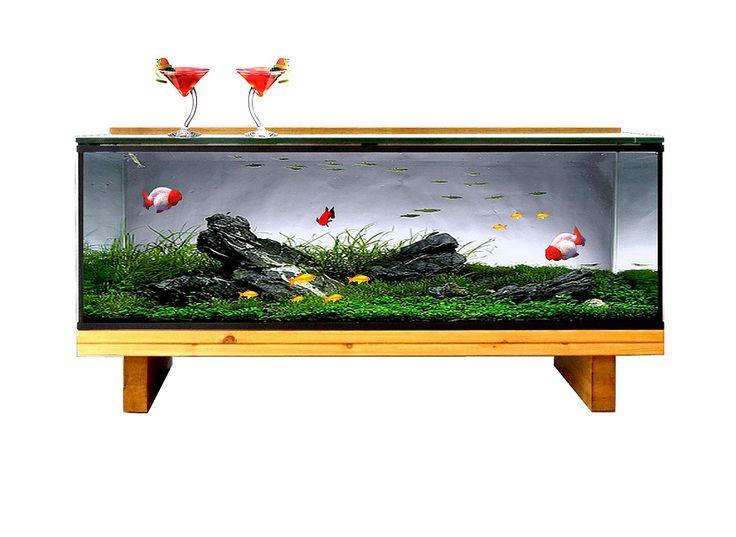 Les 25 meilleures id es de la cat gorie aquarium table for Petit aquarium original