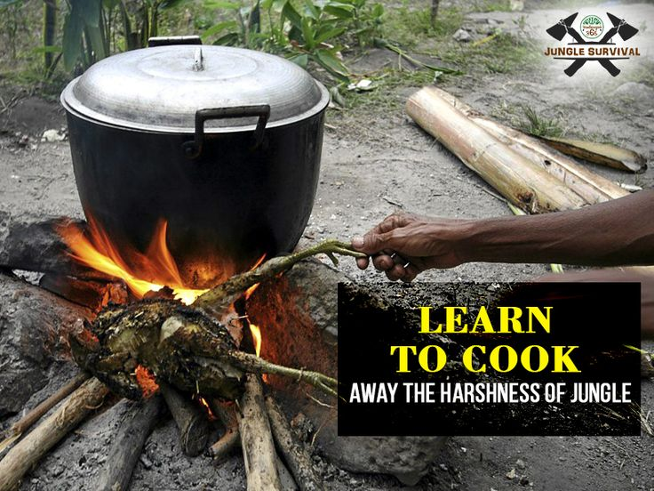 Food foraging is one of the most important aspects of #JungleSurvival. Learn tricks on how to hunt, what to eat, where to search, and how to cook in the exotic settings posed in forests. Book Here: http://www.bandhavgarh365.com/jungle-survival-activity/ #wildernesssurvival #JungleSurvivalTraining