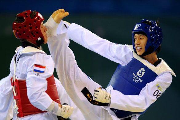 tae kwon do     taekwondo-techniques