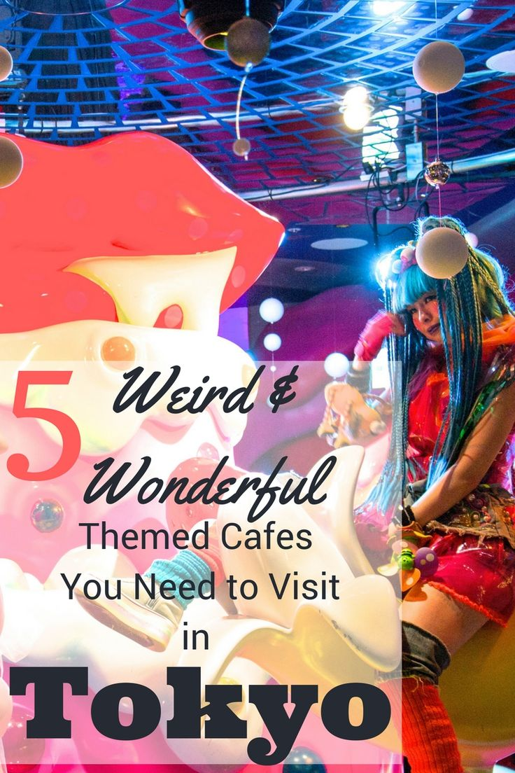 We had some weird and wonderful dining experiences during our trip to Tokyo. Check out our 5 favourite themed cafes in Tokyo | Food & Drink