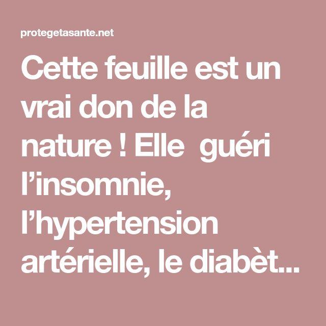 Cette feuille est un vrai don de la nature ! Elle guéri l'insomnie, l'hypertension artérielle, le diabète et l'hypercholestérolémie !
