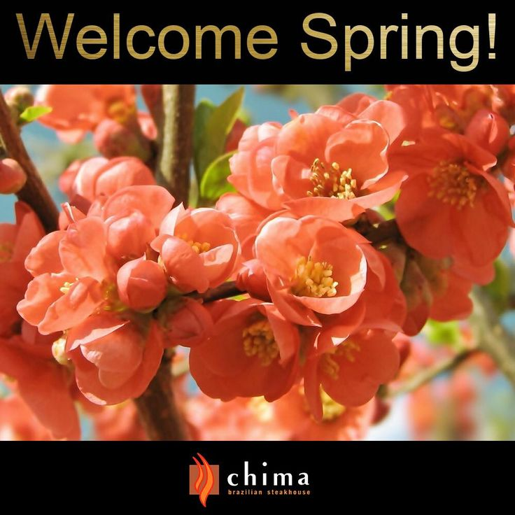 Say Goodbye to Winter and so long to snow. It's time to Welcome Spring and watch the flowers grow!