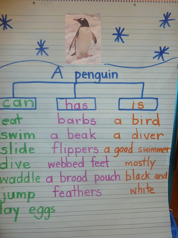 Literacy and Laughter - Celebrating Kindergarten children and the books they love: Penguin Days!