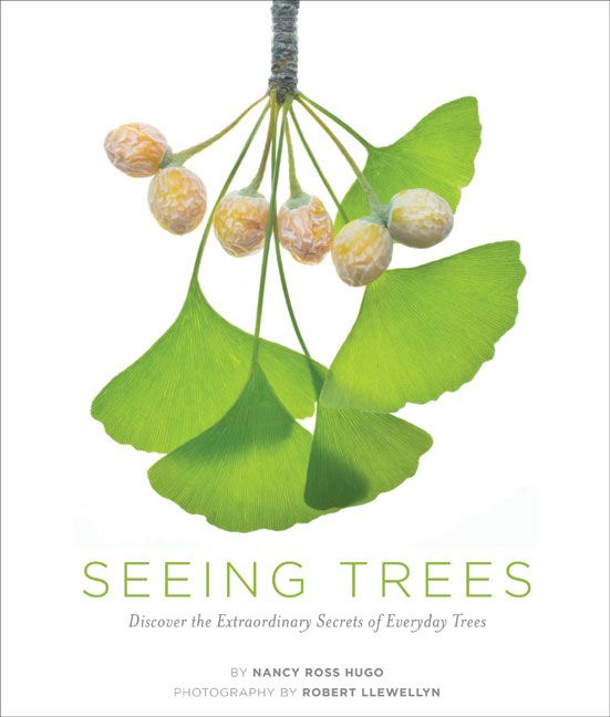 Discover the Extraordinary Secrets of Everyday Trees:  Have you ever looked at a tree? That may sound like a silly question, but there is so much more to notice about a tree than first meets the eye. Seeing Trees celebrates seldom-seen but easily observable tree traits and invites you to watch trees with the same care and sensitivity that birdwatchers watch birds.