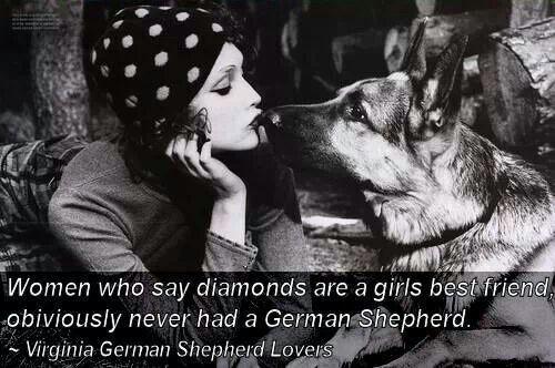 German Shepherds ;)