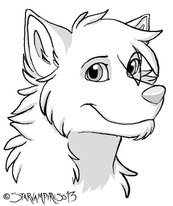 Line Drawing Wolf Head : Awesome cartoon wolf images google search fursuit