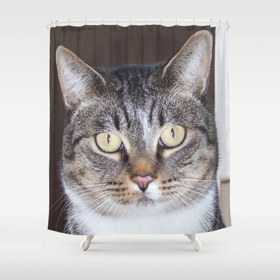 Tabby White Cat Shower Curtain By Justbyjulie
