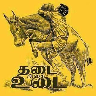 தடை அதை உடை - #ஜல்லிக்கட்டு  சமீபத்திய காவேரி விவகாரம் கற்றுக்கொடுத்த ஒரே நல்ல விஷயம்! தமிழர்களின் வீர விளையாட்டு #Jallikattu #tamil #தடை_அதை_உடை
