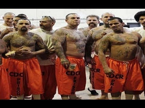 gang violence in prison essays This essay briefly recounts the evolution of the gangs that occupy failed communities and states, further discusses and updates the model of third generation street gangs discussed in an earlier.