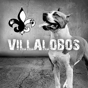 Pit Bulls and Parolees.  I love everything they do here