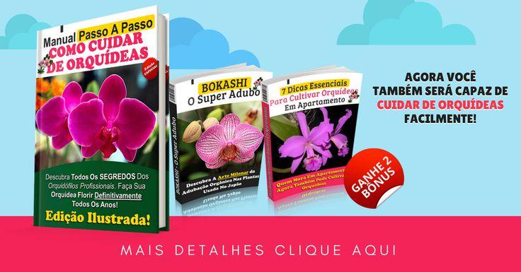[ MANUAL EXCLUSIVO] Orquídeas . Saiba cultivar e as fazerem florirem . cuidados e manutenção #flores #orquídea