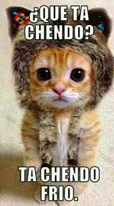 Que ta chendo? Ta chendo frío! #KYITABB