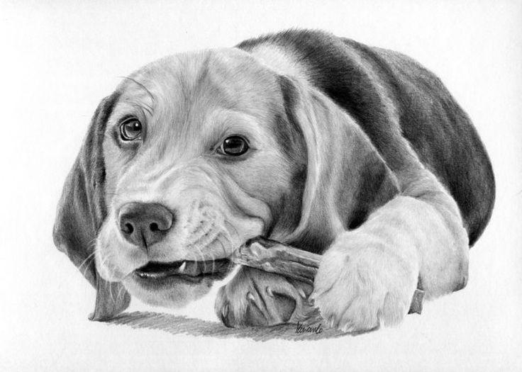 Rysunek psa ogryzającego patyk.