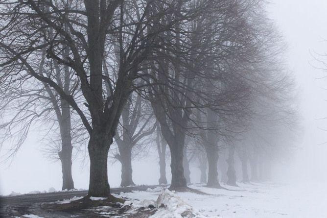 Vintertåke. Velkommen for flere bilder og ord om tåkas symbolikk på  http://bilderfrahjertet.com/vintertake