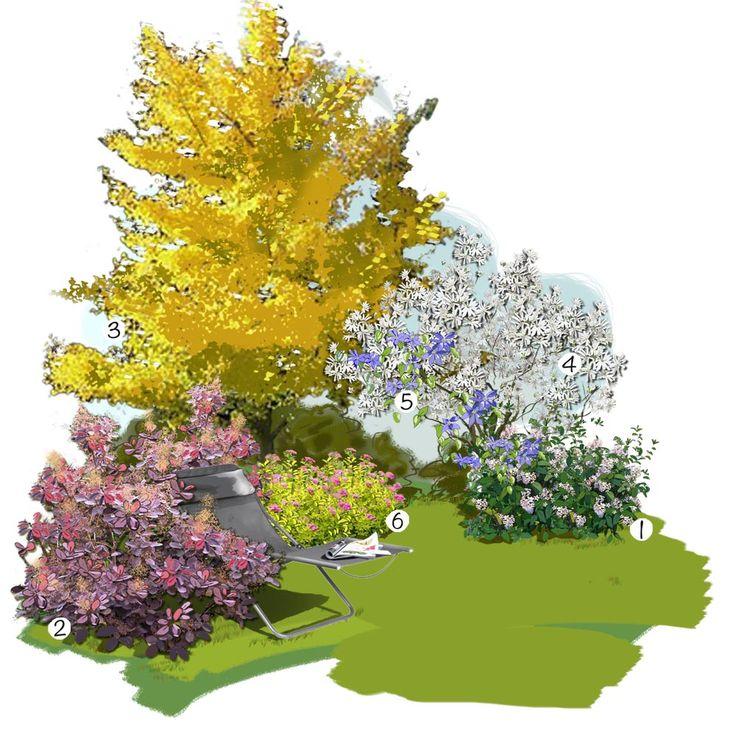 Projet aménagement jardin : Feuillages lumineux