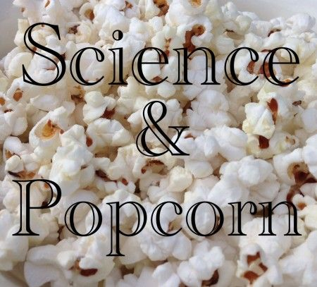 How to Study Seeds with Popcorn/How to Combine Thanksgiving and Science in your Elementary Classroom