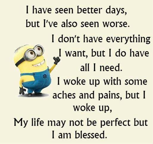 Minion Quotes Inspirational: Pin By Barbara Christensen On Minions