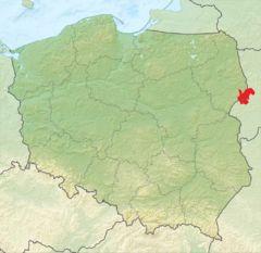 http://pl.wikipedia.org/wiki/Puszcza_Białowieska