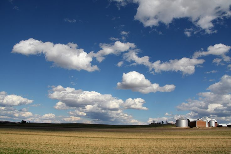 Eileen Clouds 'n' Bins  A farm I haven't ever photographed before! Today we had one of those 'good cloud' days.  https://www.flickr.com/photos/beanheadwisconsin/13990834706/sizes/l