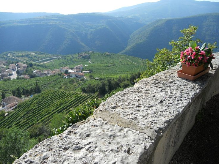 Pagus Wine Tours, Verona: See 367 reviews, articles, and 306 photos of Pagus Wine Tours, ranked No.1 on TripAdvisor among 26 attractions in Verona.