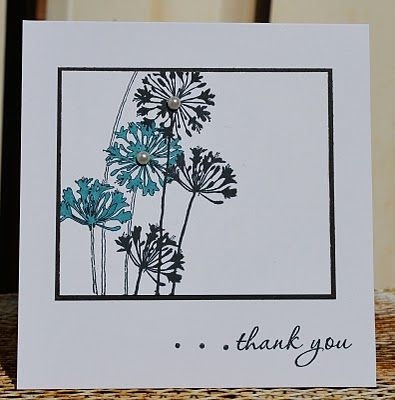 White base 5 x 5; Black 4 x 3 3/8; White 3 7/8 x 3 1/4; Stamp - Stampendous! Agapanthus Cluster; Thank you stamp from SU Because I Care set; Hand drew dots; Black StarzOn Ink; Used Cerulean color pencil to color flower; Pearls