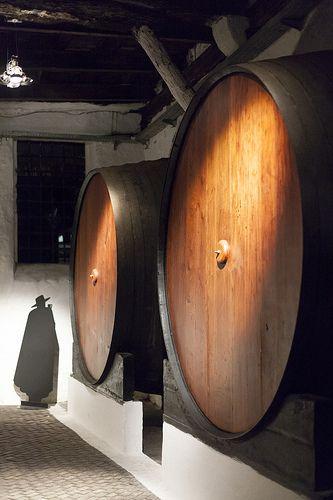 Port wine culture - 18 | Sandeman wine lodge