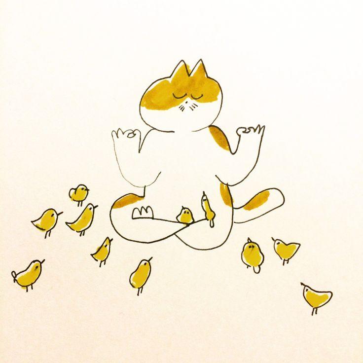 심신수련 고양이 병아리