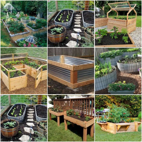 Simple Vegetable Garden Ideas At Home: Best 25+ Garden Levels Ideas On Pinterest