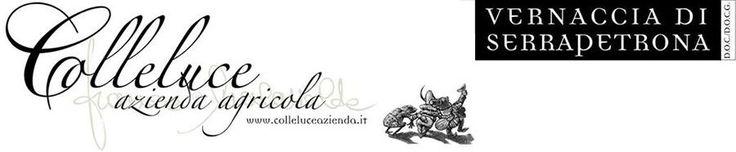 Azienda produttrice della rinomata #Vernaccia di #Serrapetrona #vino tipico delle #Marche #colleluceit
