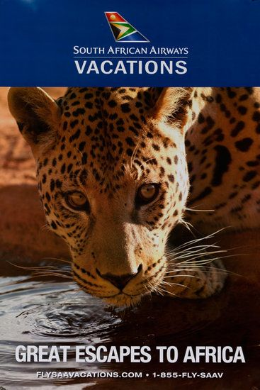DP Vintage Posters - Great Escapes to Africa Original South African Airways Travel Poster leopard