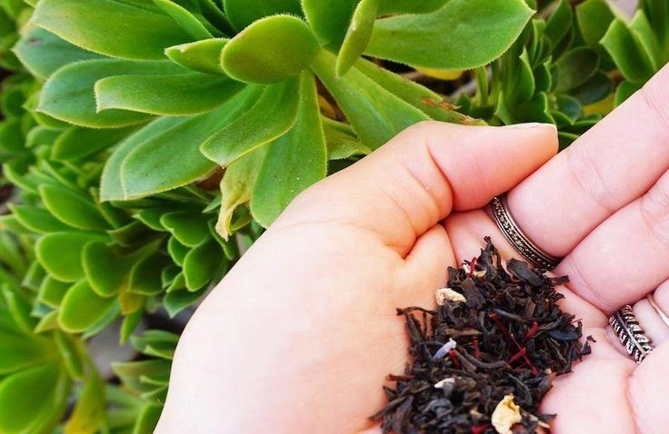 Zaran Saffron with Tea. Saffron tea in packed with antioxidants and vitamins.
