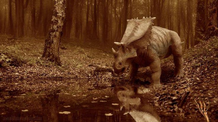Fonds d'écran Animaux > Fonds d'écran Dinosaures Heure du cercle. par djgorgo - Hebus.com