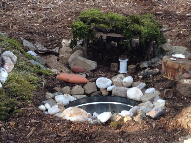 The pond 3/29/13