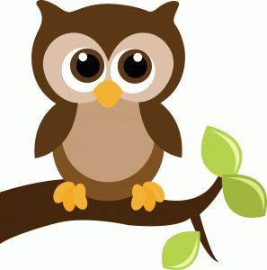 View Design: cute owl on a tree branch with leaves