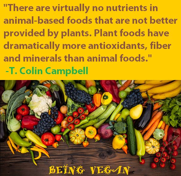 Image result for dr colin t campbell quote