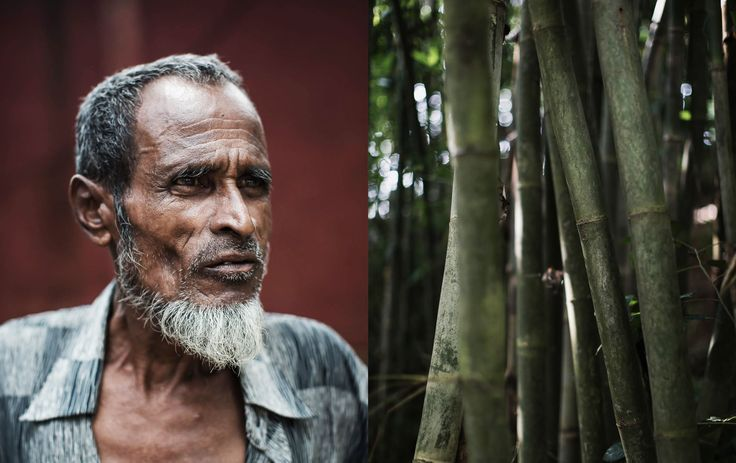 Matthew Thompson - Stamicarbon – Bangladesh - Photography