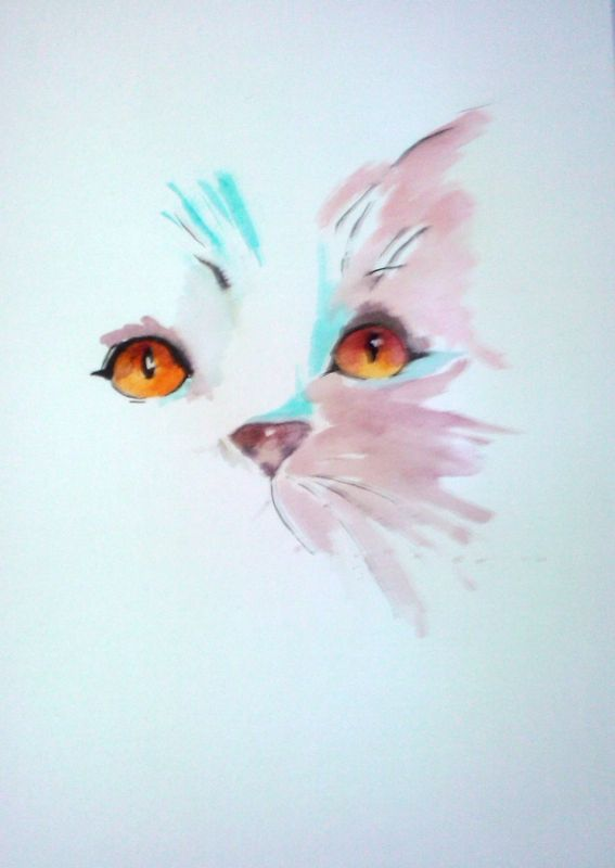 DESSIN chat aquarelle animeaux - chat