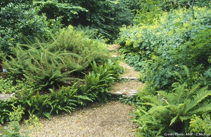 Les plantes de bordure ne sont pas comme les autres, ce sont celles que l'on voit en premier. alors, autant bien les choisir et les soigner.